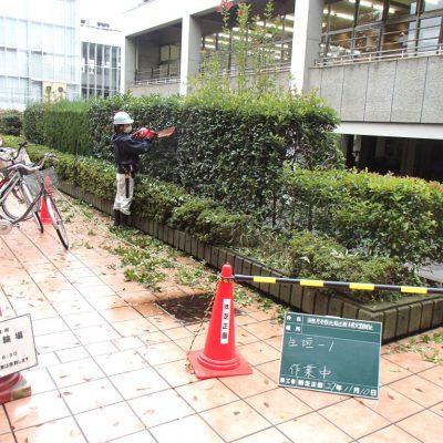 田無庁舎敷地周辺